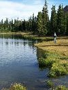 Uinta wilderness camping and fishing trips