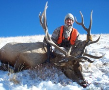 Utah Wasatch Mountains Limited Entry Elk Hunt, Utah Elk Hunts