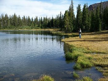 Flying J Outfitters wilderness outdoor fishing adventure trips in Utah